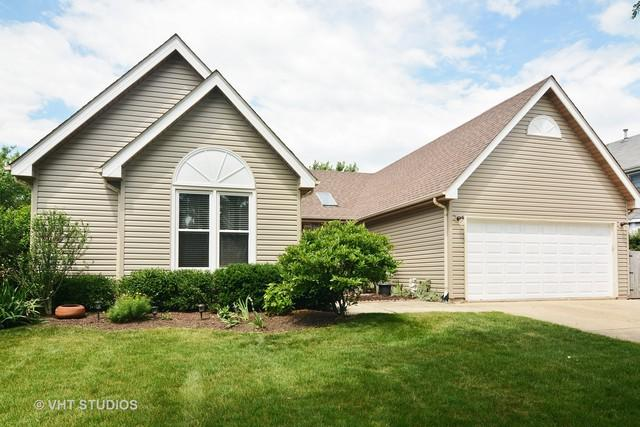 250 Stone Avenue, Lake Zurich, IL 60047 (MLS #09652318) :: The Jacobs Group