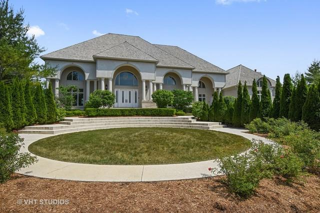 17 Blossom Court, South Barrington, IL 60010 (MLS #09662378) :: The Jacobs Group