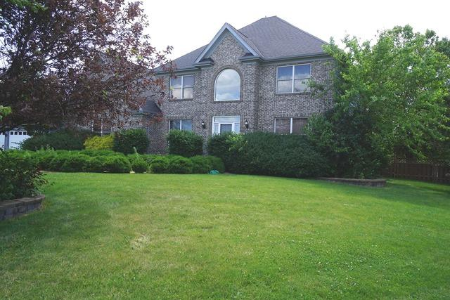 11457 S Cindy Court, Plainfield, IL 60585 (MLS #09681447) :: The Dena Furlow Team - Keller Williams Realty