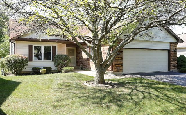 21064 W Hazelnut Lane, Plainfield, IL 60544 (MLS #09698175) :: The Wexler Group at Keller Williams Preferred Realty