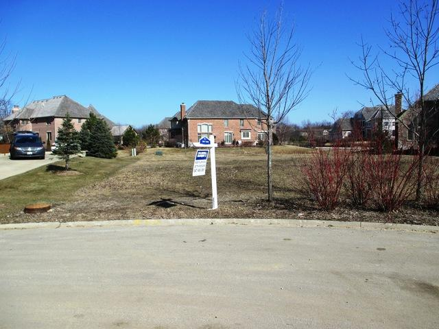7253 Litchfield Court, Long Grove, IL 60047 (MLS #09718905) :: The Schwabe Group