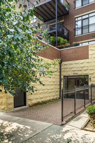 3534 N Hermitage Avenue #203, Chicago, IL 60657 (MLS #09741235) :: Domain Realty