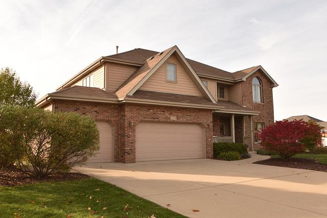 22374 Woodland Lane, Frankfort, IL 60423 (MLS #09748029) :: Domain Realty