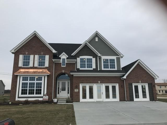 27531 Red Wing Lane, Channahon, IL 60410 (MLS #09748287) :: The Dena Furlow Team - Keller Williams Realty