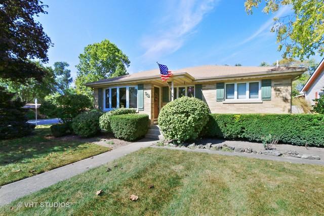 904 Mckinley Avenue, Mundelein, IL 60060 (MLS #09752749) :: Helen Oliveri Real Estate