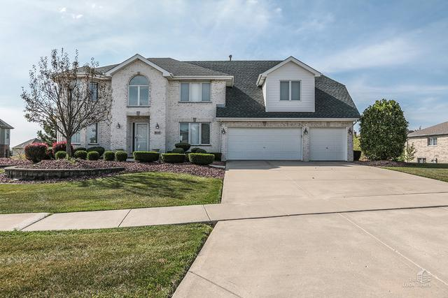 8093 Parkview Lane, Frankfort, IL 60423 (MLS #09752861) :: Domain Realty
