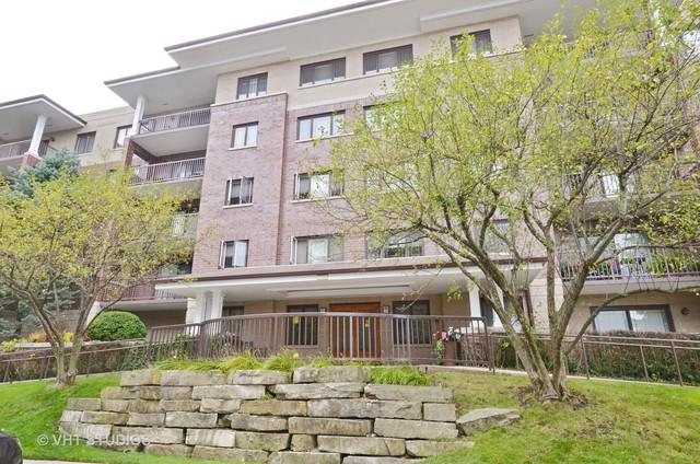 1700 2nd Street #204, Highland Park, IL 60035 (MLS #09760608) :: Domain Realty