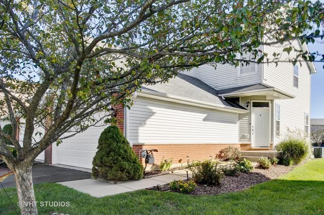 1235 Le Moyne Avenue, Romeoville, IL 60446 (MLS #09777515) :: Angie Faron with RE/MAX Ultimate Professionals
