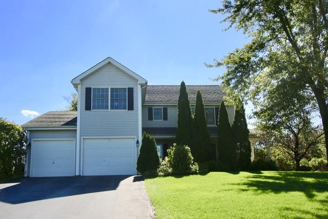 970 Harmoni Lane, New Lenox, IL 60451 (MLS #09778569) :: The Wexler Group at Keller Williams Preferred Realty