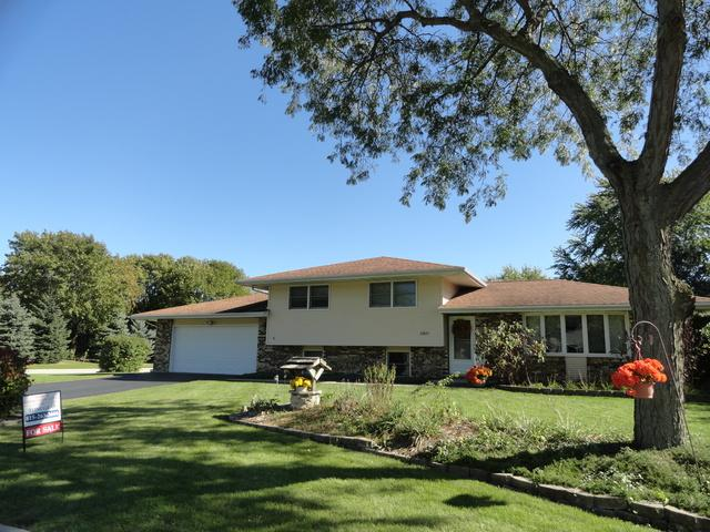 23837 Willow Lane, Minooka, IL 60447 (MLS #09779110) :: Angie Faron with RE/MAX Ultimate Professionals