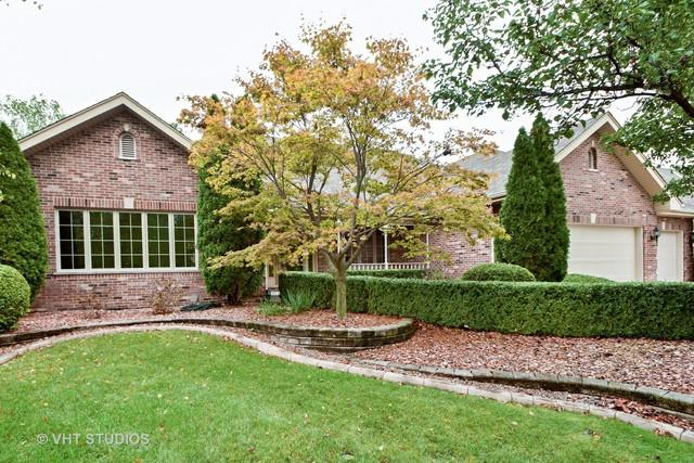 10728 Buck Drive, Orland Park, IL 60467 (MLS #09780570) :: The Wexler Group at Keller Williams Preferred Realty