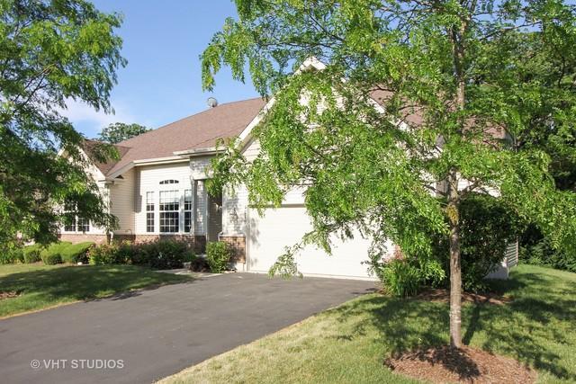 4219 Jay Street, Johnsburg, IL 60051 (MLS #09782169) :: Lewke Partners