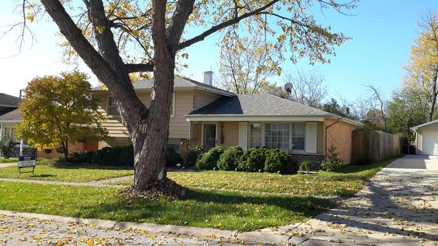 10518 S Aspen Drive, Palos Hills, IL 60465 (MLS #09797068) :: The Wexler Group at Keller Williams Preferred Realty