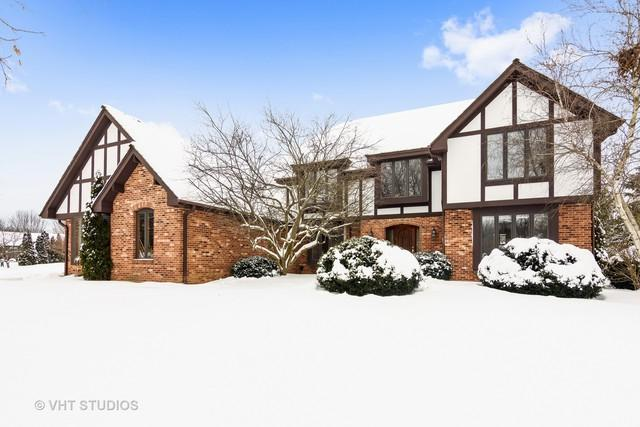 20395 Windflower Court, Mundelein, IL 60060 (MLS #09802203) :: The Jacobs Group