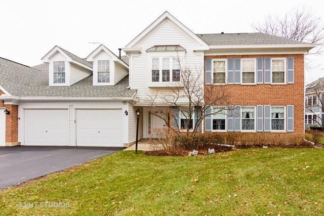 1011 Butternut Lane B, Mount Prospect, IL 60056 (MLS #09805861) :: Helen Oliveri Real Estate