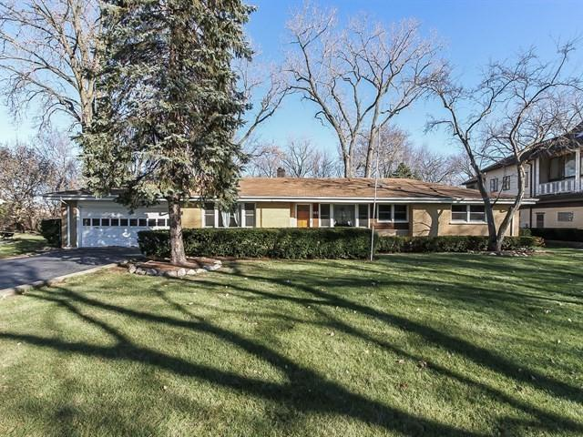103 Patricia Lane, Prospect Heights, IL 60070 (MLS #09810650) :: The Schwabe Group