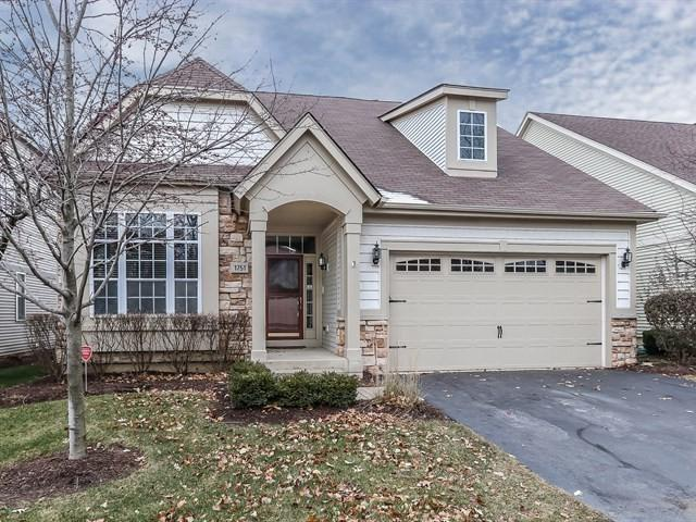 1751 Briarheath Drive, Aurora, IL 60505 (MLS #09816986) :: Domain Realty