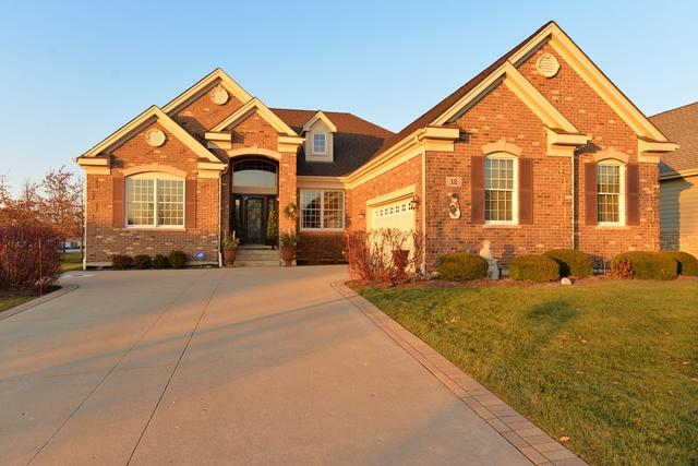 12 Chaco Court, South Barrington, IL 60010 (MLS #09820982) :: The Jacobs Group