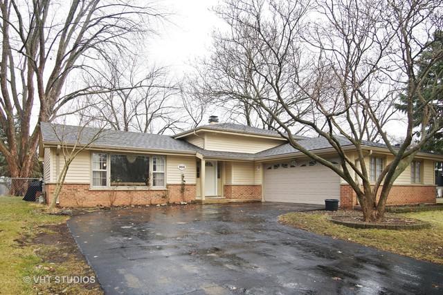 866 E Zinnia Lane, Palatine, IL 60074 (MLS #09825406) :: The Jacobs Group