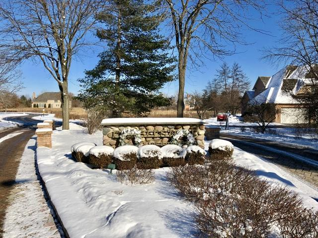Lot 29 Rosehedge Drive, Long Grove, IL 60047 (MLS #09831862) :: Property Consultants Realty