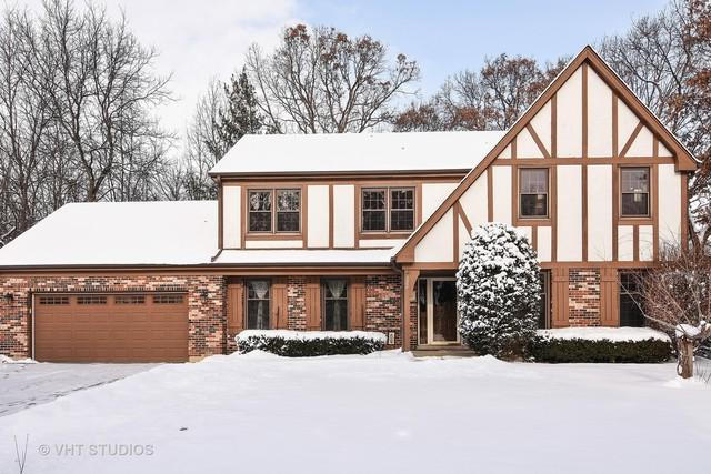 132 Schiller Street, Lake Zurich, IL 60047 (MLS #09832172) :: RE/MAX Unlimited Northwest