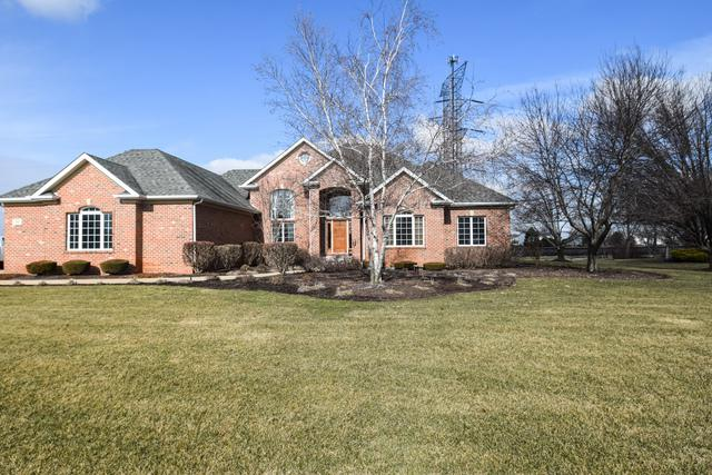 17401 S Honora Drive, Plainfield, IL 60586 (MLS #09834528) :: The Jacobs Group