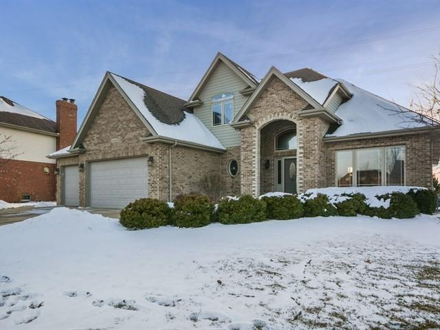 19966 Aine Drive, Frankfort, IL 60423 (MLS #09838068) :: The Wexler Group at Keller Williams Preferred Realty