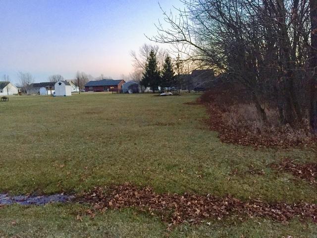 1217 Fox Run, Seneca, IL 61360 (MLS #09842747) :: Lewke Partners