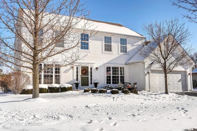 430 Oak Grove Circle, Wauconda, IL 60084 (MLS #09843358) :: Domain Realty