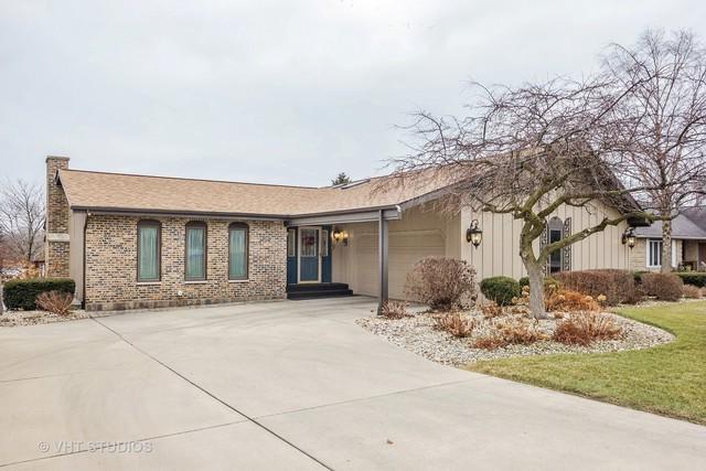 13535 S Lake Drive, Plainfield, IL 60544 (MLS #09845203) :: Lewke Partners