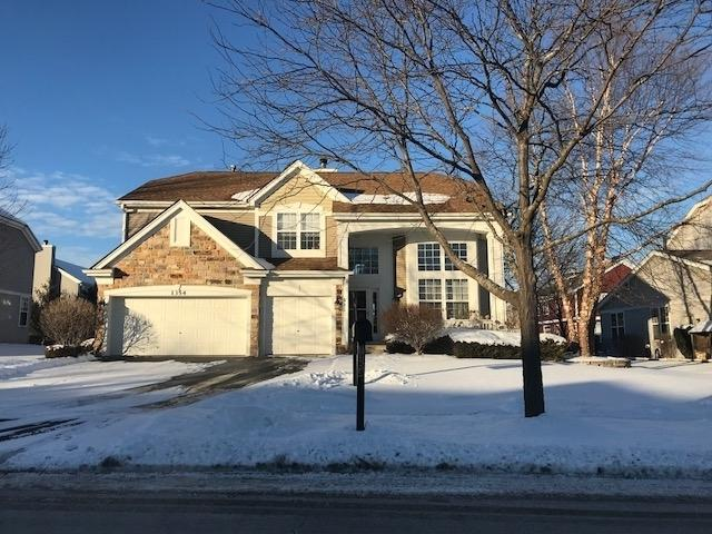 1354 Mulberry Lane, Cary, IL 60013 (MLS #09845801) :: The Dena Furlow Team - Keller Williams Realty