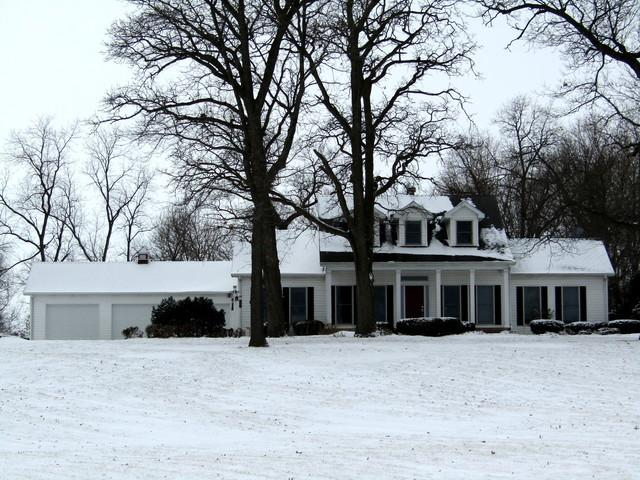 18811 Bauer Road, Custer Park, IL 60481 (MLS #09848375) :: The Dena Furlow Team - Keller Williams Realty