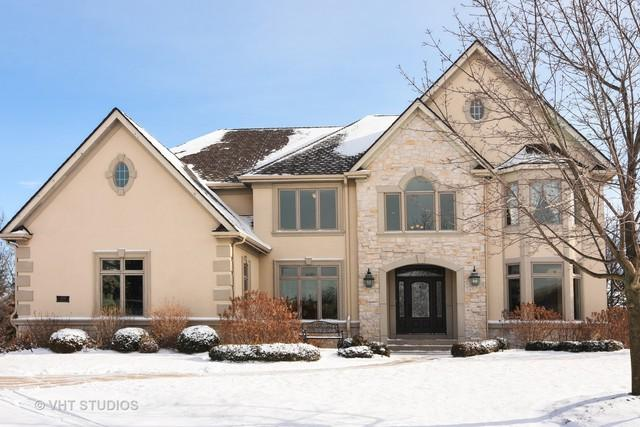 21514 W Hummingbird Court, Kildeer, IL 60047 (MLS #09850823) :: Helen Oliveri Real Estate