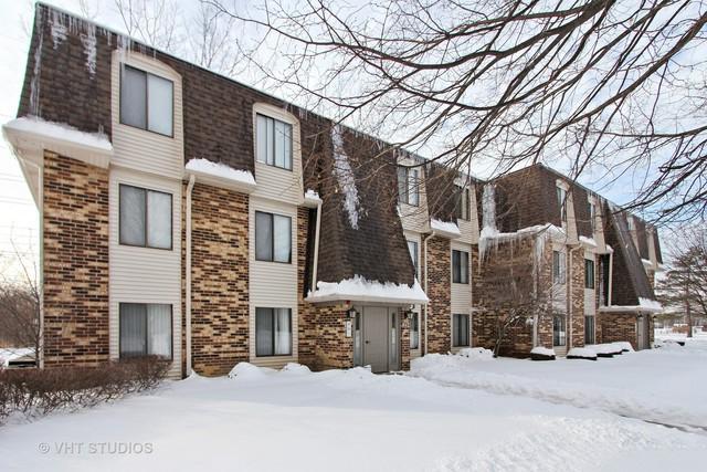 234 W Court Of Shorewood 3B, Vernon Hills, IL 60061 (MLS #09858274) :: Helen Oliveri Real Estate