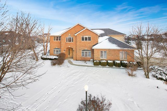 16925 Burr Oak Drive, Homer Glen, IL 60491 (MLS #09859294) :: Baz Realty Network | Keller Williams Preferred Realty