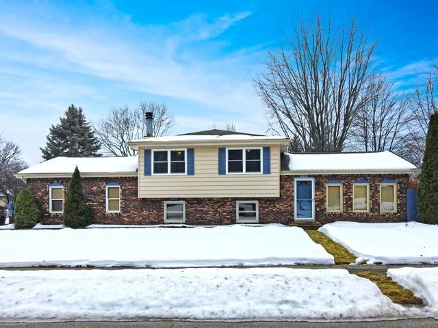 869 Rainbow Terrace, South Elgin, IL 60177 (MLS #09859807) :: The Dena Furlow Team - Keller Williams Realty
