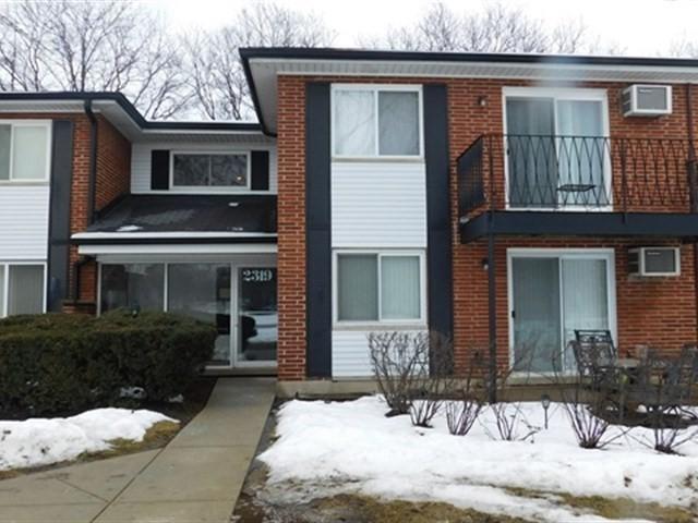 2319 E Olive Street 2F, Arlington Heights, IL 60004 (MLS #09860064) :: Helen Oliveri Real Estate