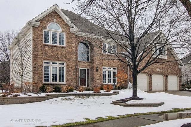 1631 Dublin Drive, Naperville, IL 60564 (MLS #09865250) :: The Wexler Group at Keller Williams Preferred Realty