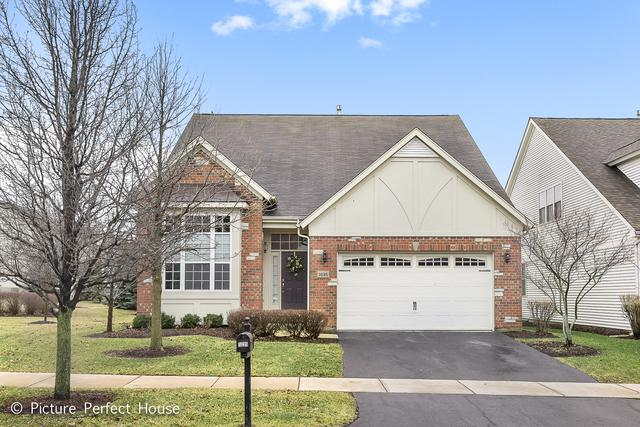 1695 Briarheath Drive, Aurora, IL 60505 (MLS #09865832) :: Domain Realty