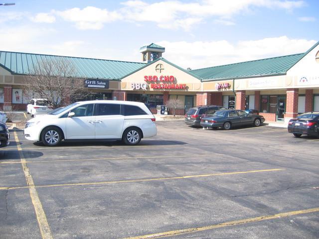 1600 Maple Avenue, Lisle, IL 60532 (MLS #09873642) :: The Jacobs Group