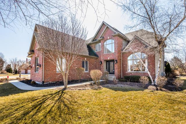 11678 Rushmore Drive, Plainfield, IL 60585 (MLS #09877246) :: The Jacobs Group