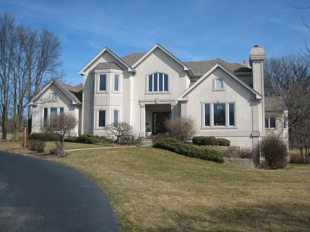 3N327 Woodcrest Court, Elburn, IL 60119 (MLS #09882092) :: Domain Realty
