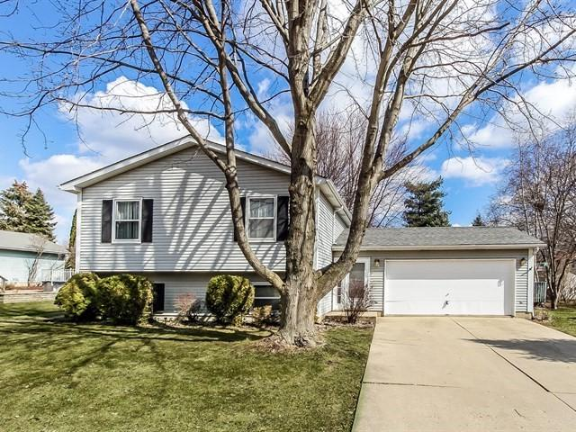 611 Michigan Avenue, South Elgin, IL 60177 (MLS #09882417) :: The Jacobs Group