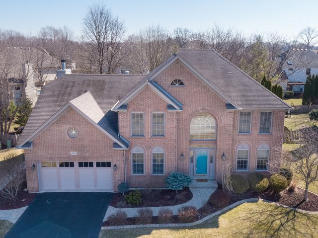 540 Arbor Lane, Oswego, IL 60543 (MLS #09886724) :: Angie Faron with RE/MAX Ultimate Professionals