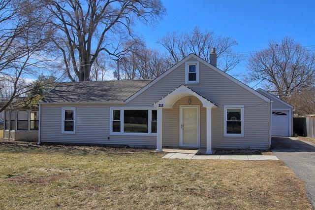 218 S Lyle Avenue, Elgin, IL 60123 (MLS #09886803) :: Domain Realty
