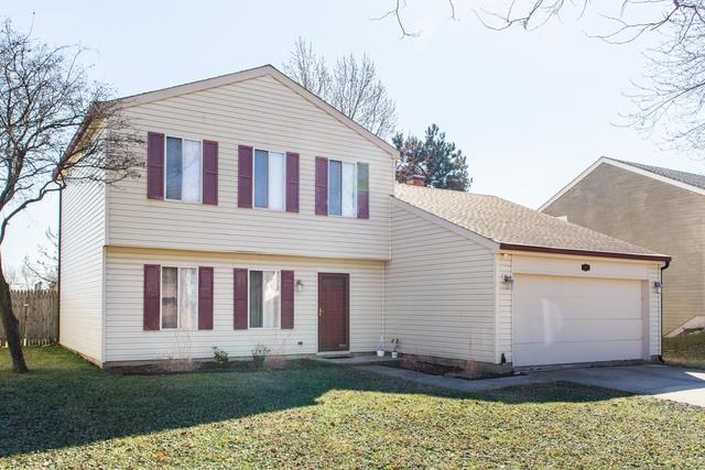 1207 S Appletree Lane, Bartlett, IL 60103 (MLS #09887285) :: Baz Realty Network | Keller Williams Preferred Realty