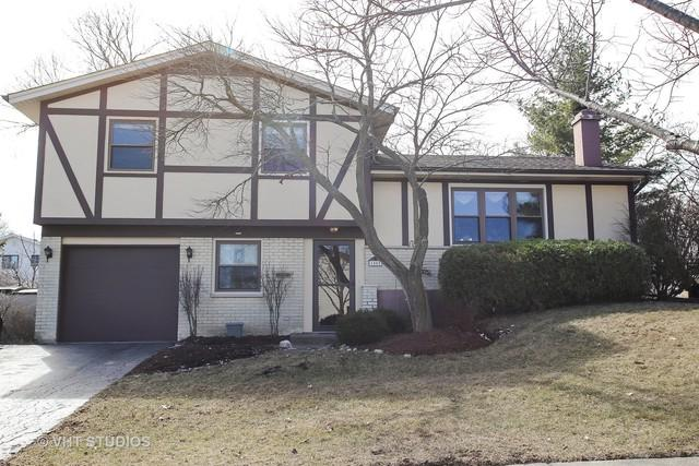 1585 Colorado Lane, Elk Grove Village, IL 60007 (MLS #09888253) :: Lewke Partners