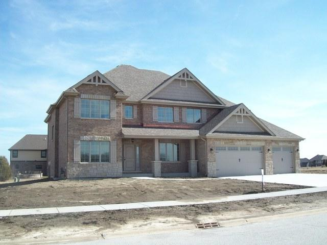 8673 Stone Creek Boulevard, Frankfort, IL 60423 (MLS #09889346) :: The Jacobs Group
