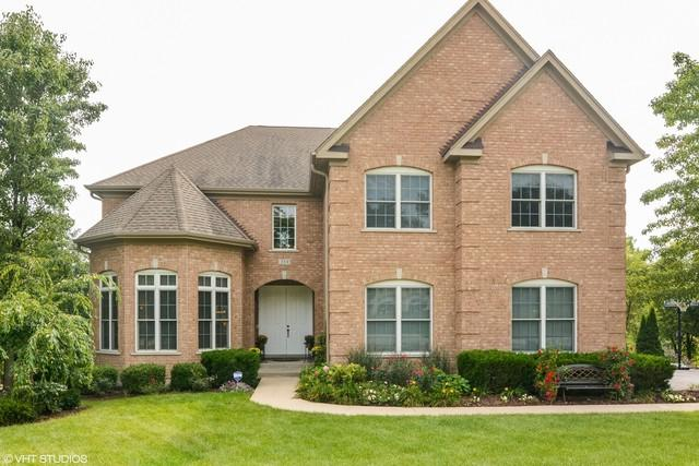 259 Clair View Court, Lake Zurich, IL 60047 (MLS #09889802) :: The Jacobs Group