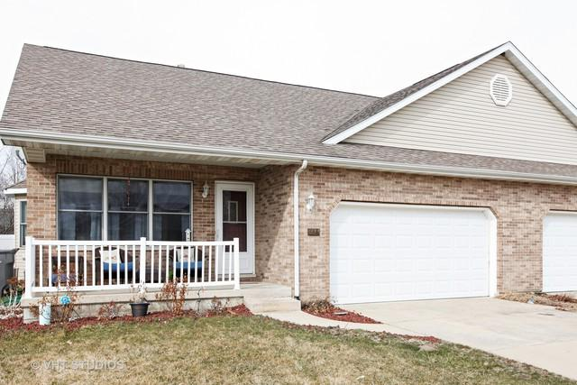 914 Waterford Court #914, Wilmington, IL 60481 (MLS #09891674) :: Littlefield Group